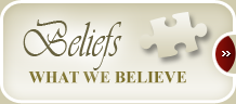 Our North American Lutheran Church's Beliefs